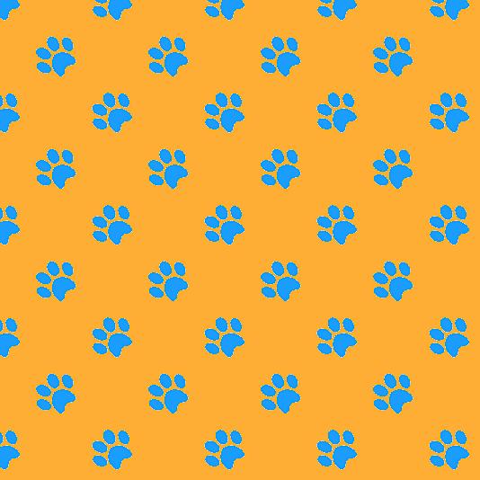 Week 33 – Puppy